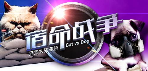 宿命中的对决 猫与狗的终极大决战