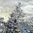 雪花松树动态壁纸 V