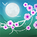 花夜动态壁纸 Blooming Night Pro
