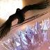 神秘的岛屿 Cryptic Caverns-icon