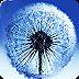蒲公英S3動態壁紙漢化版 Water Dandelion LWP