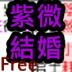 Amoney紫微斗数占卜结婚年 V1.2.2
