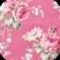 春季花卉动态壁纸-icon