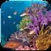 海底热带鱼动态壁纸-icon