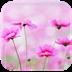 那些清新花儿动态壁纸-icon