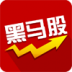 黑马股票-icon
