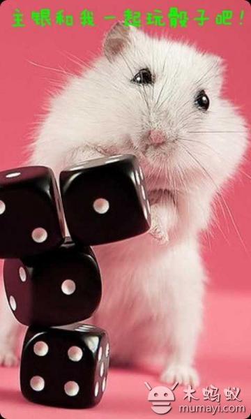 手机宠物可爱小仓鼠 v1.8
