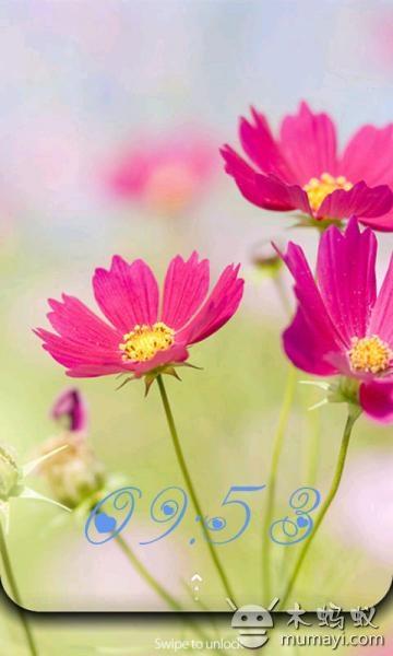 植物小清新hd锁屏 v1.2.
