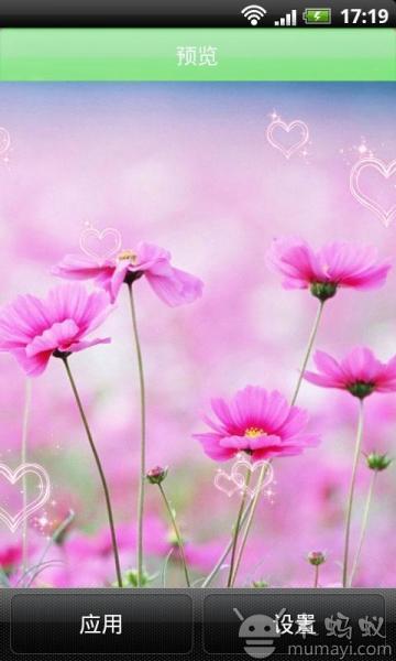 春暖花开遇见你