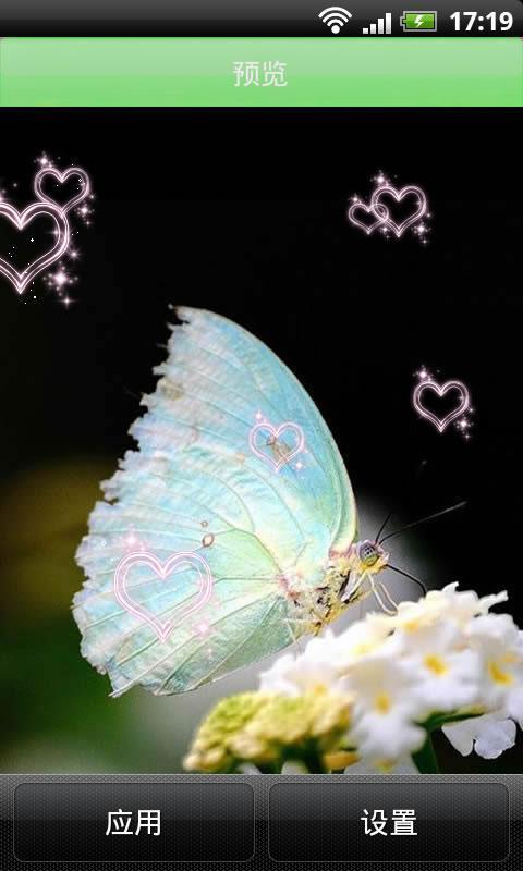 唯美蝴蝶飞舞动态壁纸 下载 唯美蝴蝶飞舞动态