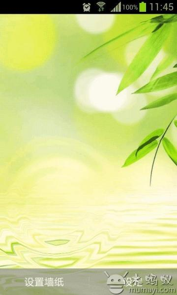 壁纸 动态 绿竹/提交者:王玫瑰