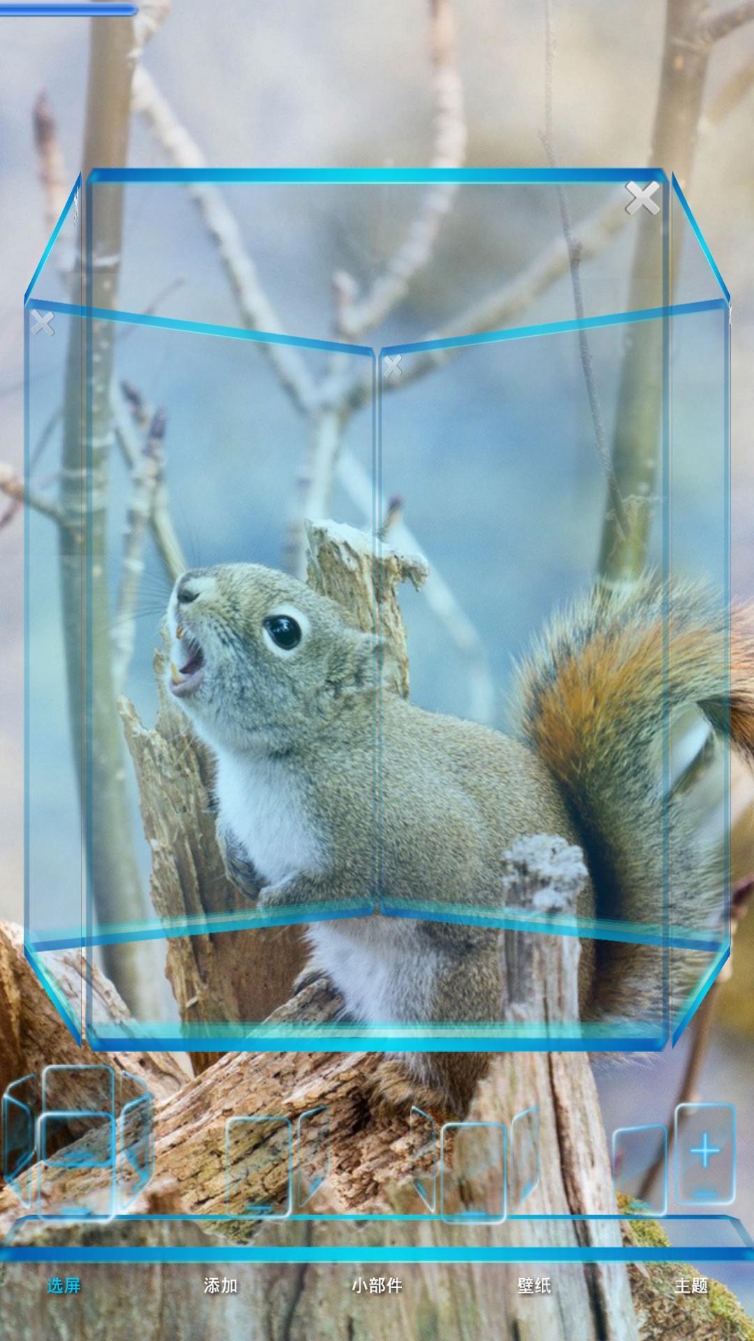 可爱小松鼠宝软3d主题 v2.3.3.3