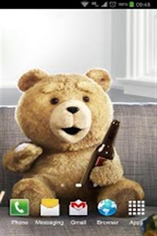 泰迪熊壁纸 v1