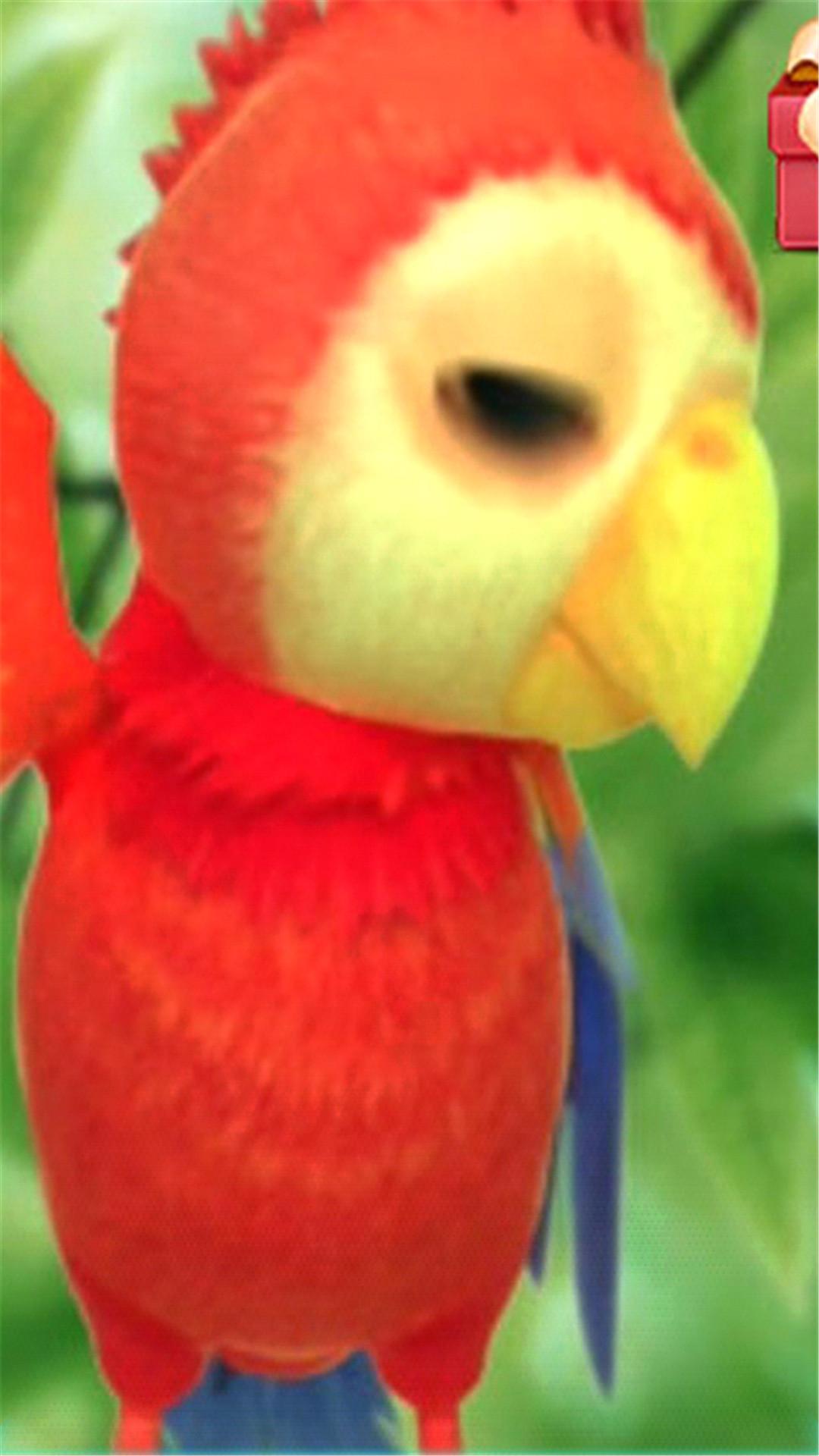 会说话的鹦鹉皮埃尔-桌面壁纸 v1.0