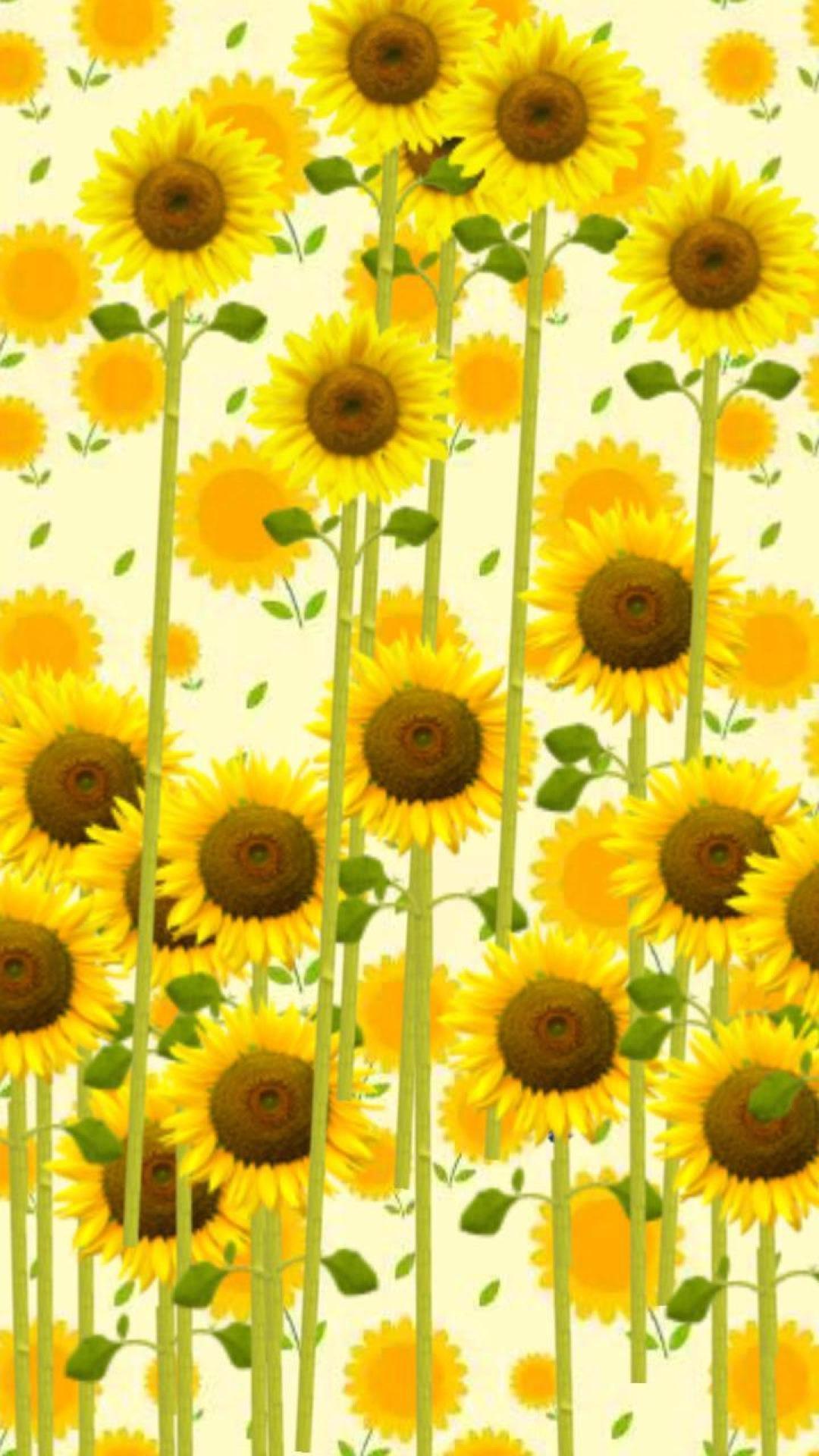 壁纸梵高向日葵-壁纸