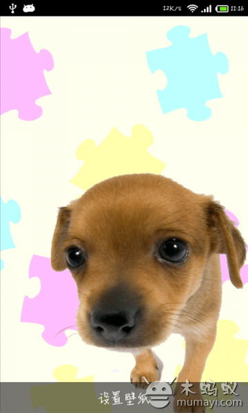 壁纸 动物 狗 狗狗 360