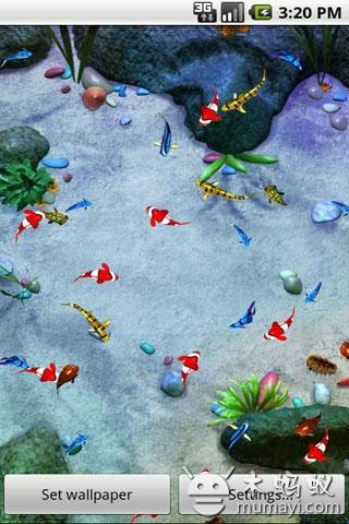 壁纸/海底世界动态壁纸V2.3_主题壁纸_应用_木蚂蚁...