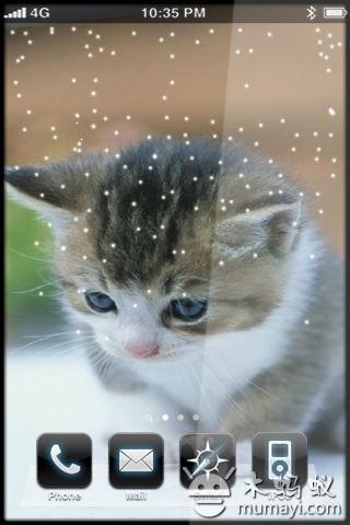 可爱猫咪动态壁纸v1.0_主题壁纸_软件_木蚂蚁安卓市场