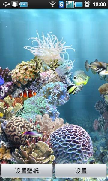 壁纸 海底 海底世界 海洋馆 水族馆 360_600 竖版 竖屏 手机
