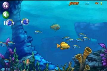 壁纸 海底 海底世界 海洋馆 水族馆 桌面 360_240