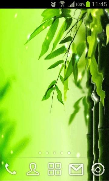 绿竹动态壁纸 v2